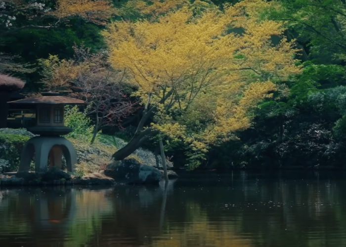 Pond reflecting yellow leaves at Happo-en Garden