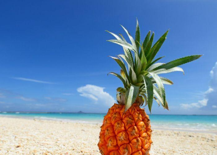 Pineapple against a blue sky and ocean