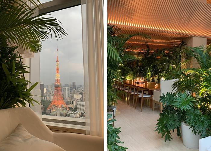Window view of Tokyo Tower and Interior shot of botanicals and seating areas