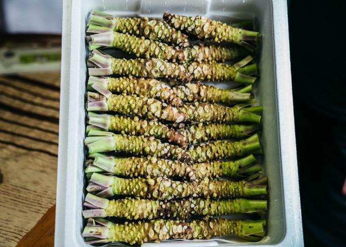 Box of wasabi from a wasabi farm in Shizuoka