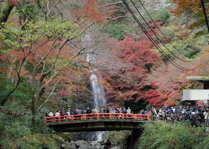 People on a bridge admiring a waterfall surrounded by autumn trees