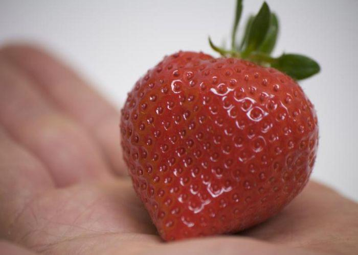 A close-up of a ruby red strawberry with a green tuft of leaves, held on the palm of someone's hand