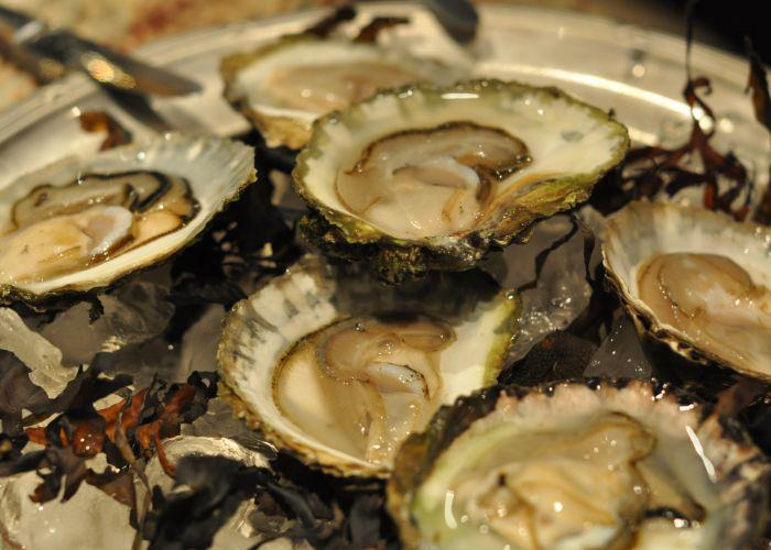 A plate of Matsushima Oysters