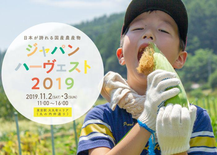 A picture with the Japan Harvest logo and a Japanese boy in a field eating some corn
