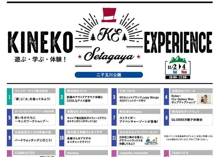 Poster for the Kineko children's international film festival