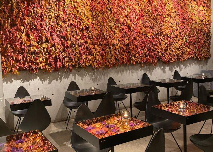 Interior of Nomu Cafe, a stylish Tokyo brunch spot