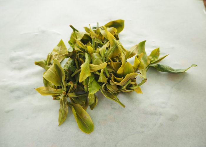 A close up of green tea leaves