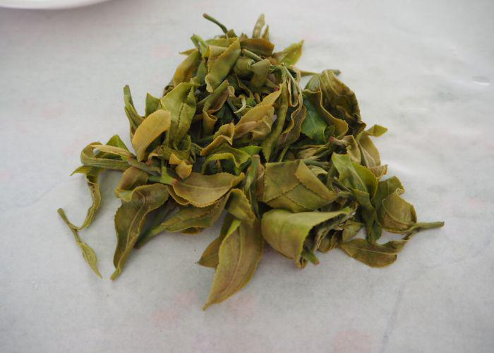 A close up of green tea leaves drying