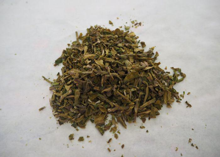 A close up of hand rolled dried green tea leaves after five repetitions
