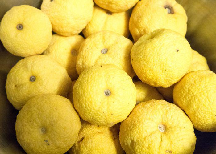 A load of yellow yuzu