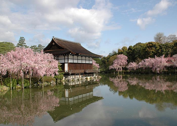 Heian Jingu Shrine building surrounded by cherry blossom trees reflected in the pond