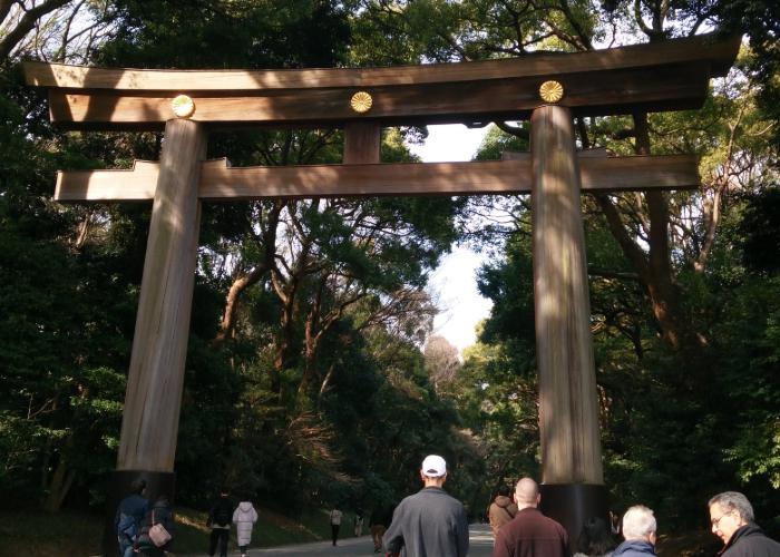 Wooden tori gate at Meiji Jingu Shrine