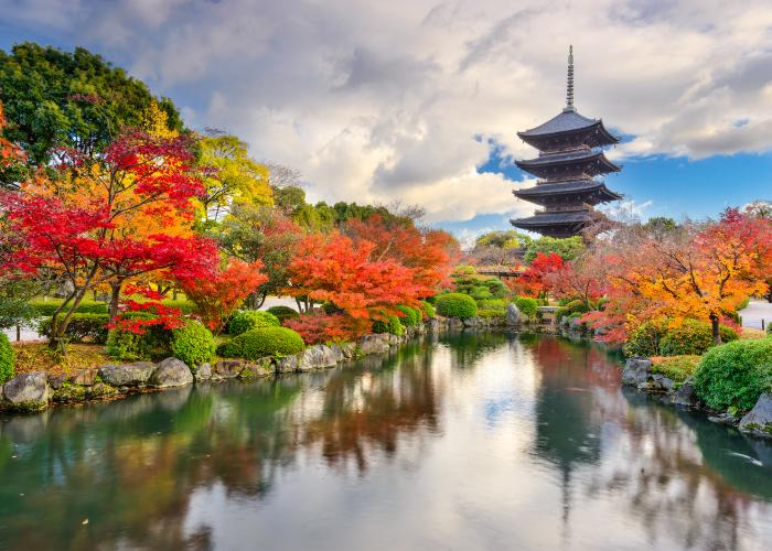 Tō-ji Pagoda in Kyoto, the tallest wooden pagoda in Japan, surrounded by autumnal leaves
