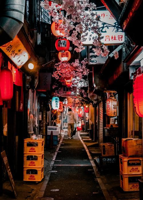 Shinjuku Omoide Yokocho in Shinjuku lit by red lanterns