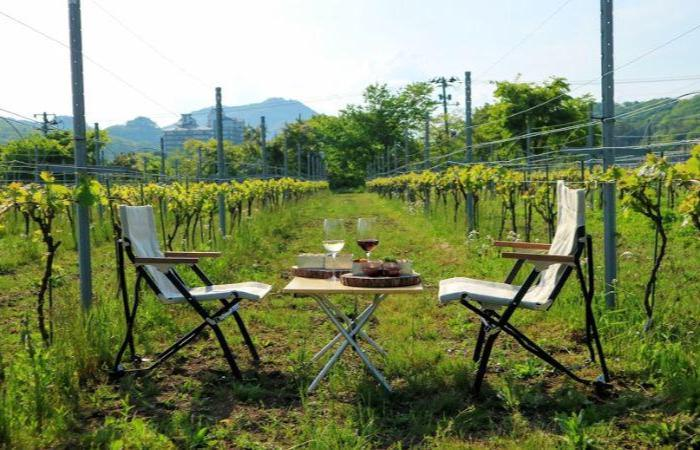 Two chairs and a table with wine glasses and food on a table in a field