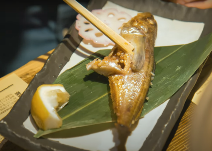 A pair of chopsticks reveals the eggs inside a cooked fish at the Akita Namahage Restaurant